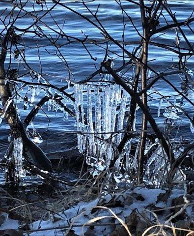 ice april 22 2020