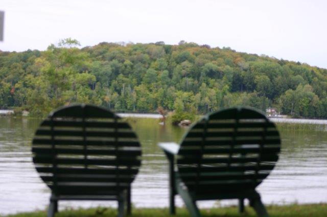 looking at lake