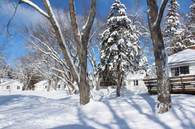 snow 01 2 1024x683 1