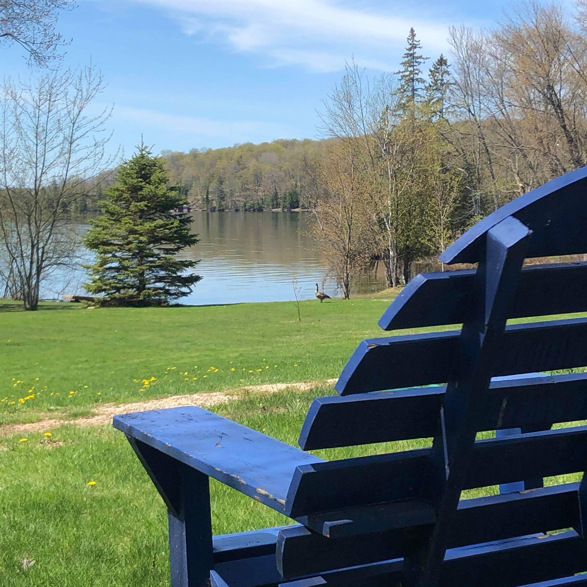 looking at lake with Muskoka Chair